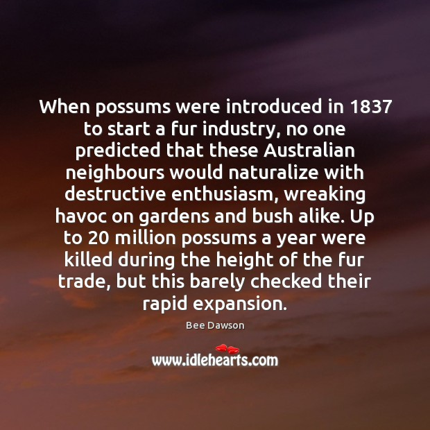 When possums were introduced in 1837 to start a fur industry, no one Image