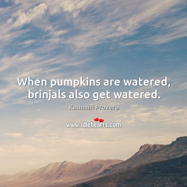 Image, When pumpkins are watered, brinjals also get watered.