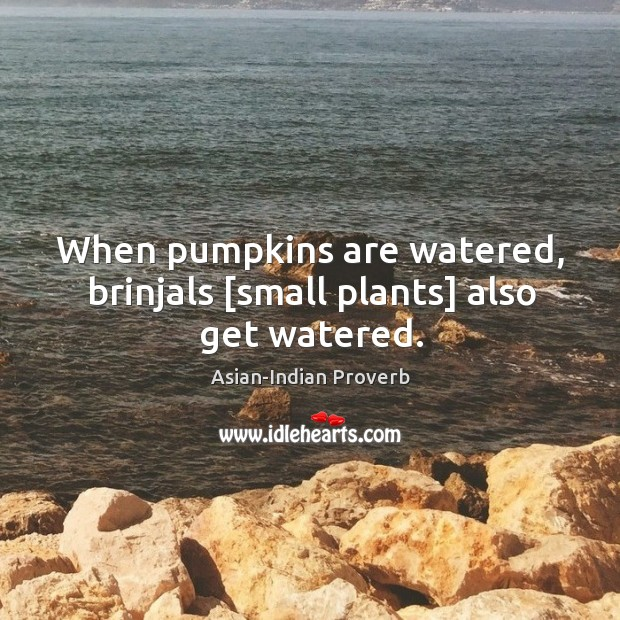 Image, When pumpkins are watered, brinjals [small plants] also get watered.