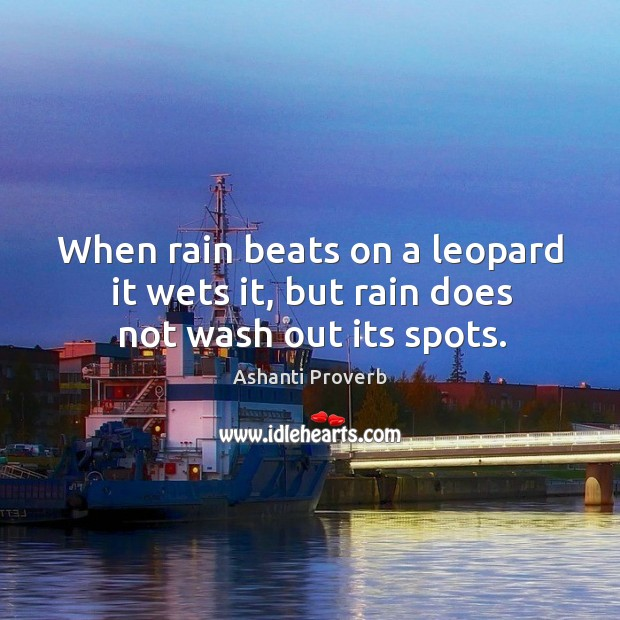 When rain beats on a leopard it wets it, but rain does not wash out its spots. Ashanti Proverbs Image