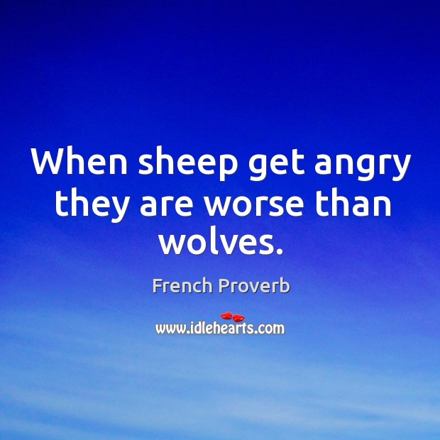 Image, When sheep get angry they are worse than wolves.