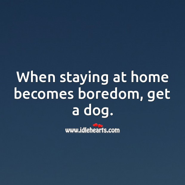 When staying at home becomes boredom, get a dog. Stay Safe Quotes Image