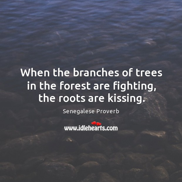 When the branches of trees in the forest are fighting, the roots are kissing. Senegalese Proverbs Image
