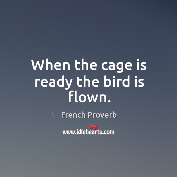 Image, When the cage is ready the bird is flown.