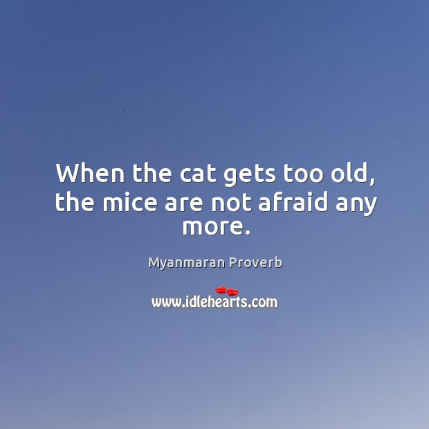 When the cat gets too old, the mice are not afraid any more. Myanmaran Proverbs Image