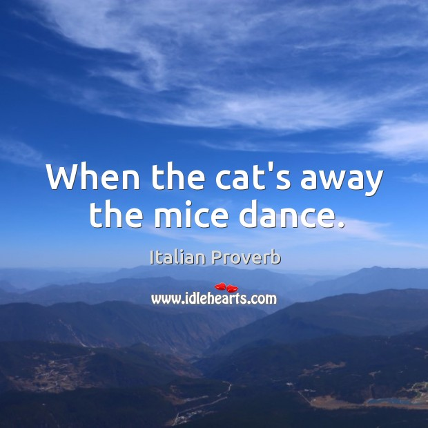 Image, When the cat's away the mice dance.