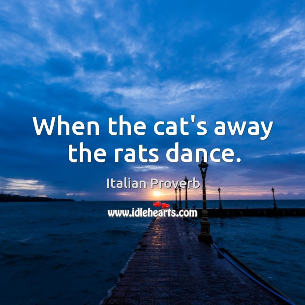 Image, When the cat's away the rats dance.