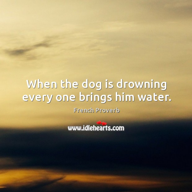 Image, When the dog is drowning every one brings him water.