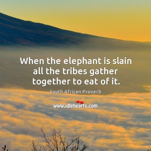 Image, When the elephant is slain all the tribes gather together to eat of it.