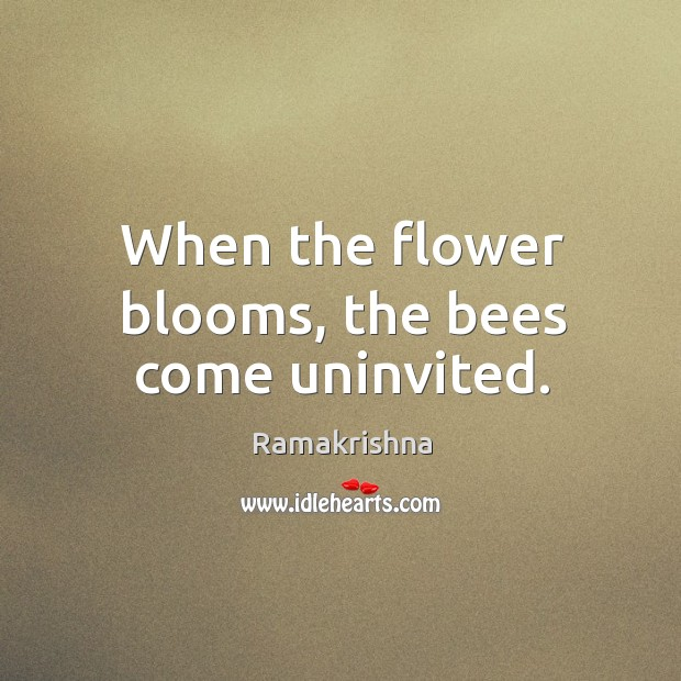 Image, When the flower blooms, the bees come uninvited.