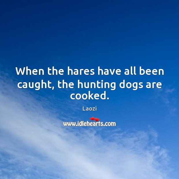 When the hares have all been caught, the hunting dogs are cooked. Laozi Picture Quote