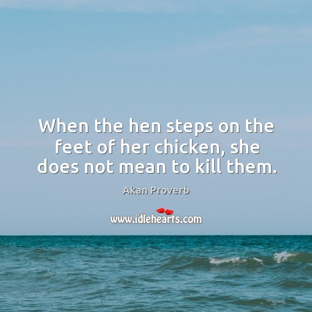 When the hen steps on the feet of her chicken, she does not mean to kill them. Akan Proverbs Image