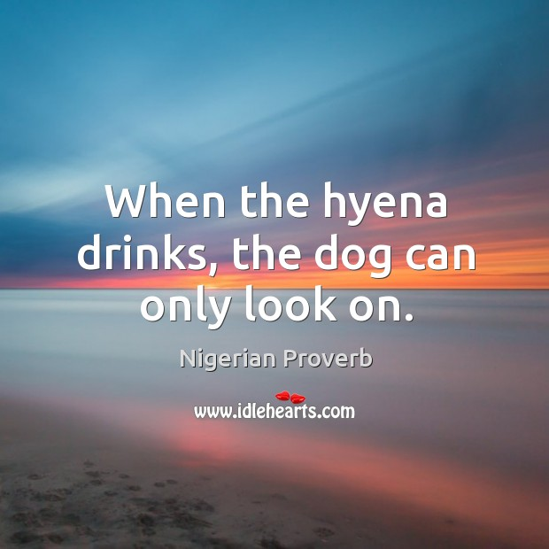Image, When the hyena drinks, the dog can only look on.