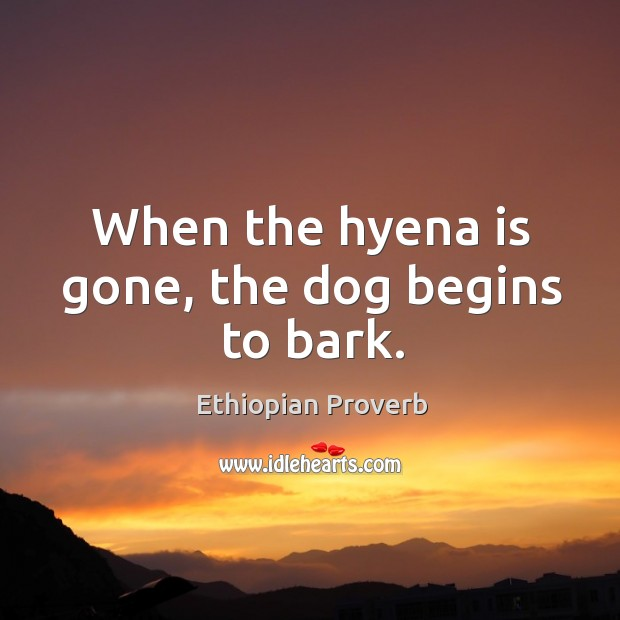 When the hyena is gone, the dog begins to bark. Ethiopian Proverbs Image