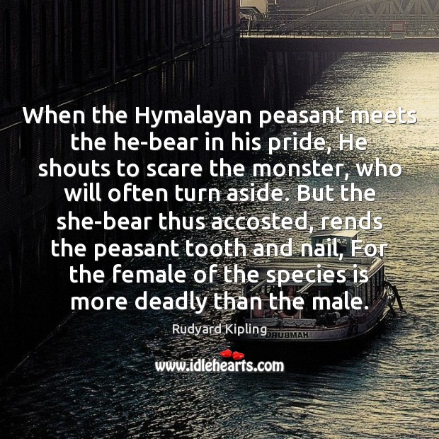 Image, When the Hymalayan peasant meets the he-bear in his pride, He shouts