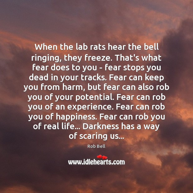 When the lab rats hear the bell ringing, they freeze. That's what Rob Bell Picture Quote