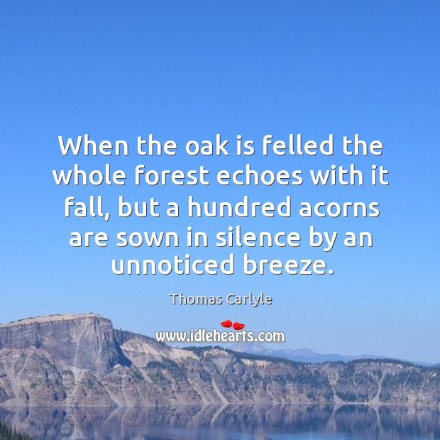 When the oak is felled the whole forest echoes with it fall, but a hundred acorns are sown in silence by an unnoticed breeze. Image
