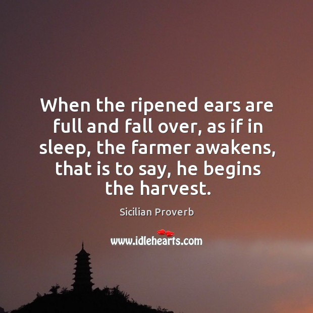 Image, When the ripened ears are full and fall over, as if in sleep