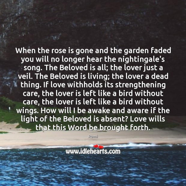Image, When the rose is gone and the garden faded you will no