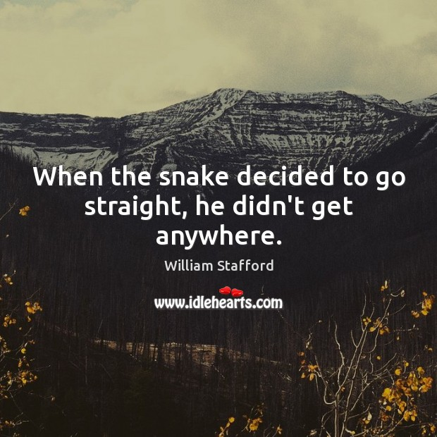 Image, When the snake decided to go straight, he didn't get anywhere.