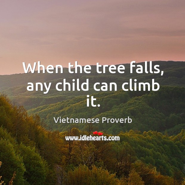 When the tree falls, any child can climb it. Vietnamese Proverbs Image
