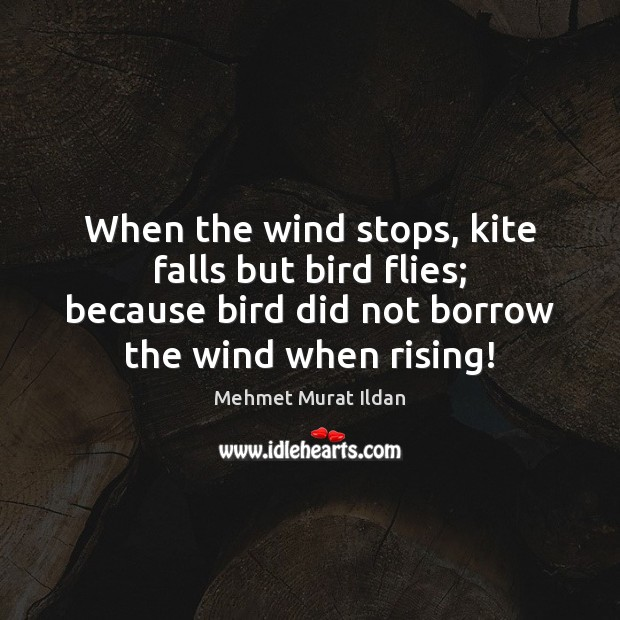 Image, When the wind stops, kite falls but bird flies; because bird did