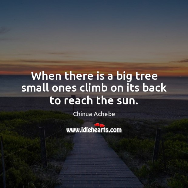 When there is a big tree small ones climb on its back to reach the sun. Chinua Achebe Picture Quote
