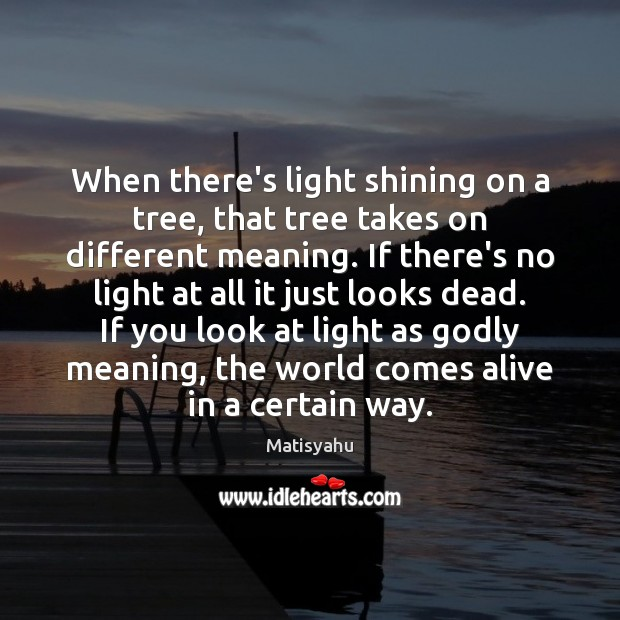 Image, When there's light shining on a tree, that tree takes on different