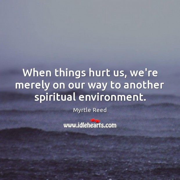 When things hurt us, we're merely on our way to another spiritual environment. Myrtle Reed Picture Quote