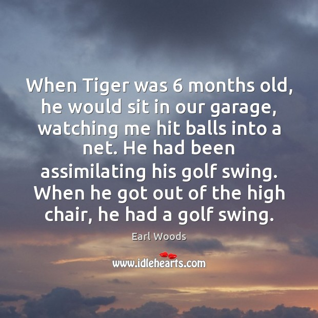 Image, When Tiger was 6 months old, he would sit in our garage, watching
