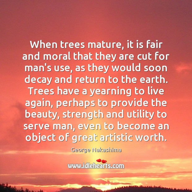 When trees mature, it is fair and moral that they are cut Image