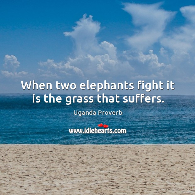 Image, When two elephants fight it is the grass that suffers.