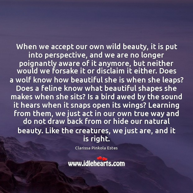 Image, When we accept our own wild beauty, it is put into perspective,