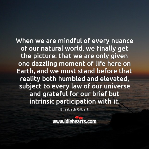 When we are mindful of every nuance of our natural world, we Elizabeth Gilbert Picture Quote