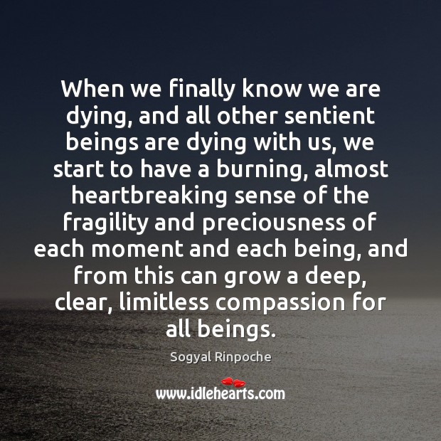 When we finally know we are dying, and all other sentient beings Sogyal Rinpoche Picture Quote