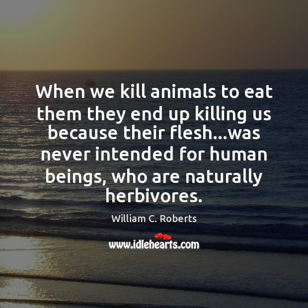 When we kill animals to eat them they end up killing us Image