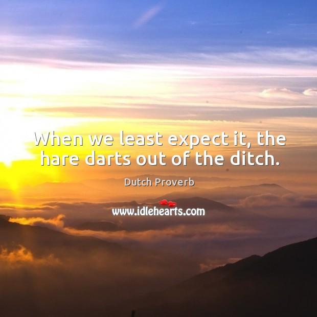 When we least expect it, the hare darts out of the ditch. Image