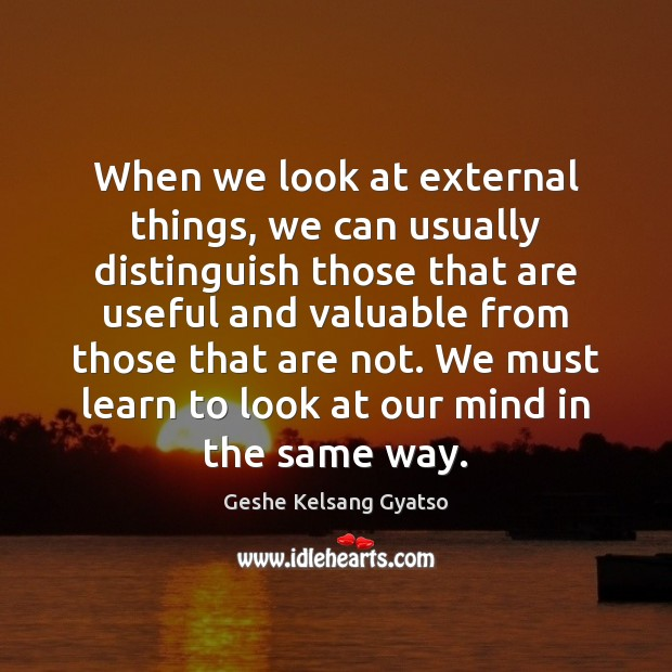 When we look at external things, we can usually distinguish those that Geshe Kelsang Gyatso Picture Quote