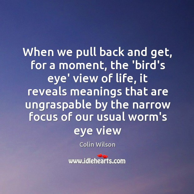 When we pull back and get, for a moment, the 'bird's eye' Colin Wilson Picture Quote