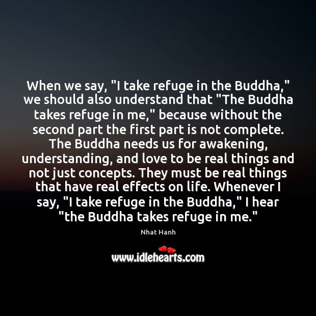 "When we say, ""I take refuge in the Buddha,"" we should also Image"