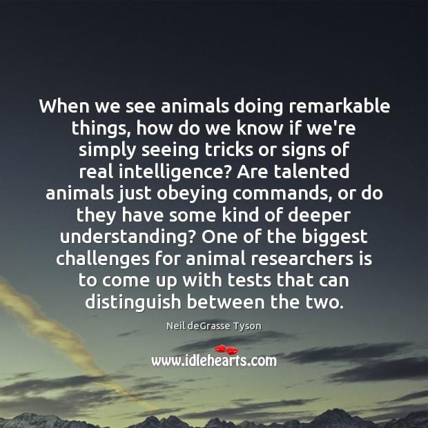 When we see animals doing remarkable things, how do we know if Image