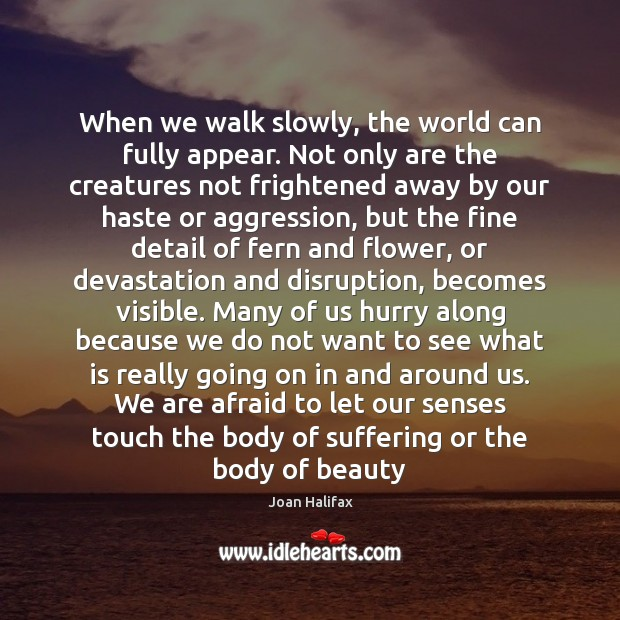 Image, When we walk slowly, the world can fully appear. Not only are