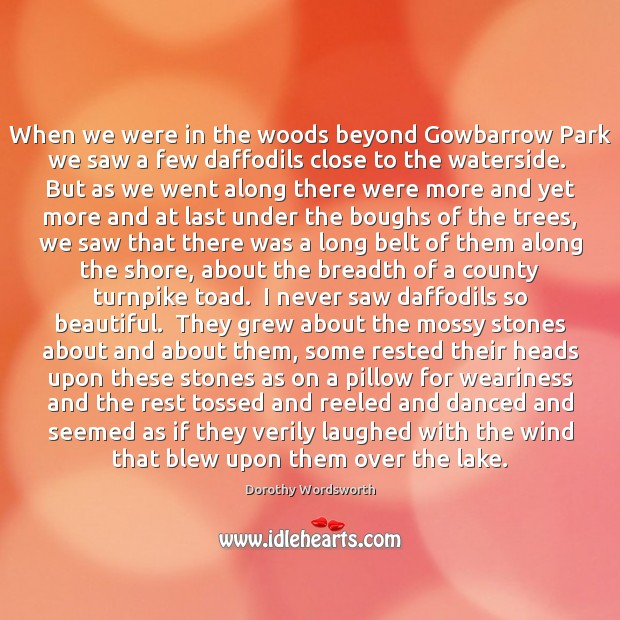 When we were in the woods beyond Gowbarrow Park we saw a Image