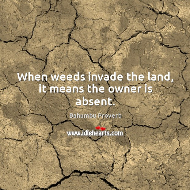 Image, When weeds invade the land, it means the owner is absent.
