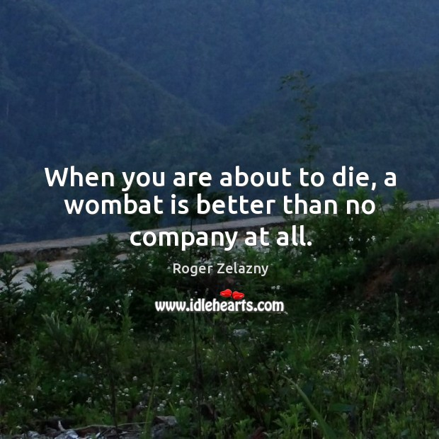 Image, When you are about to die, a wombat is better than no company at all.