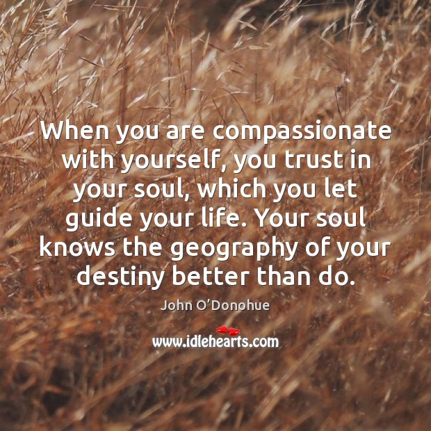 When you are compassionate with yourself, you trust in your soul, which John O'Donohue Picture Quote