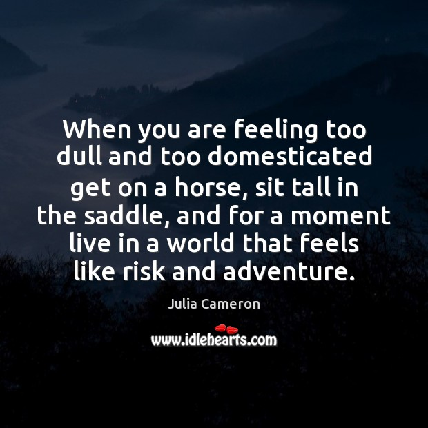 When you are feeling too dull and too domesticated get on a Julia Cameron Picture Quote