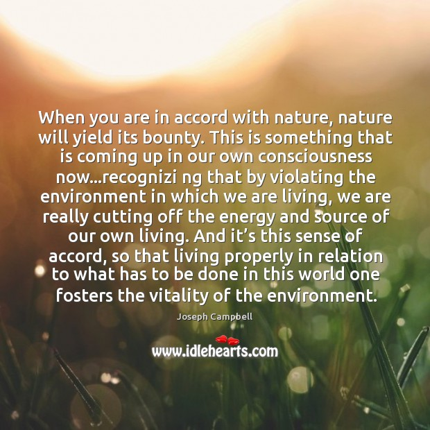When you are in accord with nature, nature will yield its bounty. Image