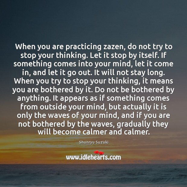 Image, When you are practicing zazen, do not try to stop your thinking.
