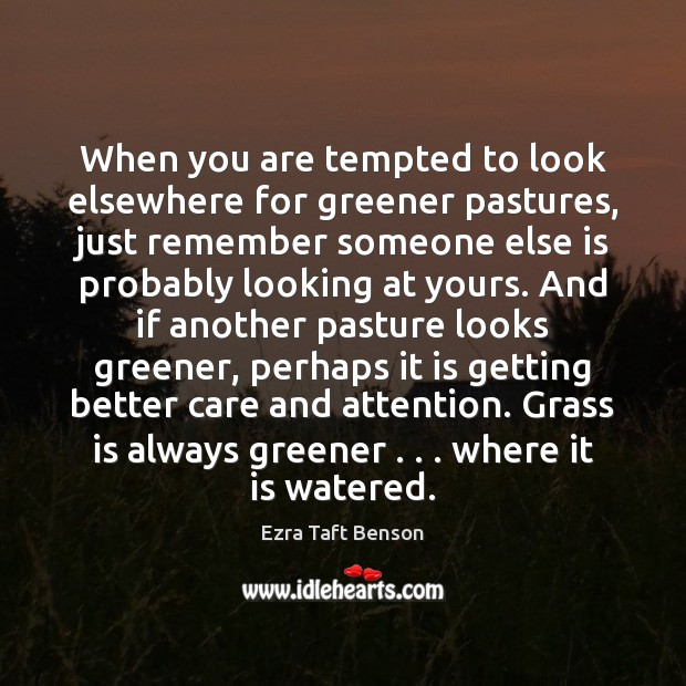 Image, When you are tempted to look elsewhere for greener pastures, just remember